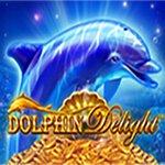Dolphin Delight